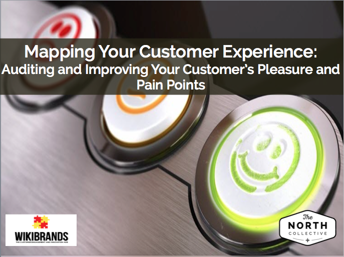 Mapping Your Customer Experience: Auditing and Improving Your Customer's Pleasure and Pain Points
