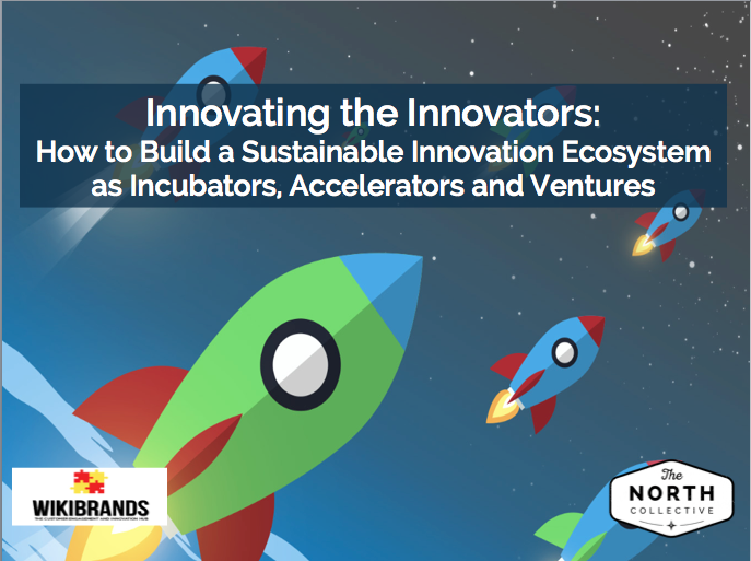 Innovating the Innovators: How to Build a Sustainable Innovation System as Incubators, Accelerators and Ventures