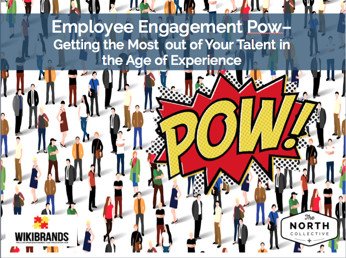 Employee Engagement Pow – Getting the Most out of Your Talent in the Age of Experience