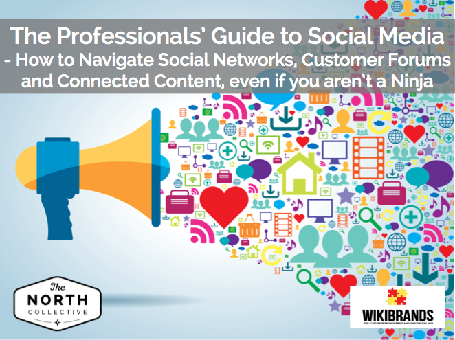 The Professional's Guide to Social Media – How to Navigate Social Networks, Customers Forums and Connected Content, even if you aren't a Ninja