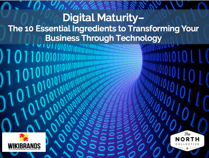 Digital Maturity – The 10 Essential Ingredients to Transforming Your Business Through Technology